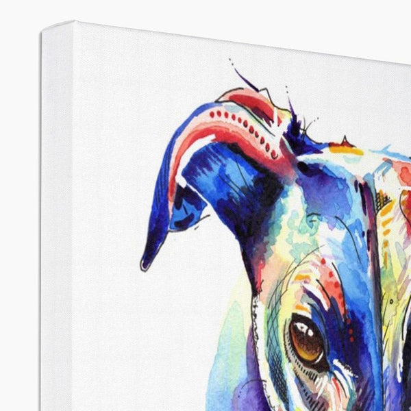 Greyhound Canvas Prints top view
