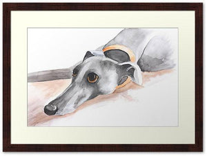 Greyhound Art Print, Greyhound Gifts