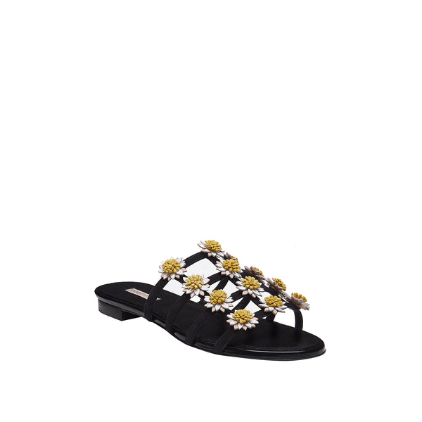 Daisy Slide With White Daisies - Black