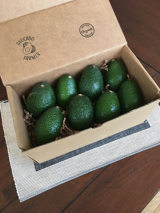 Organic Lamb Hass California Avocados (8 pack)