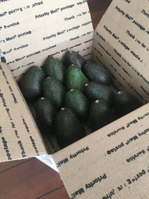 The Mother Lode - Organic California Lamb Hass avocados