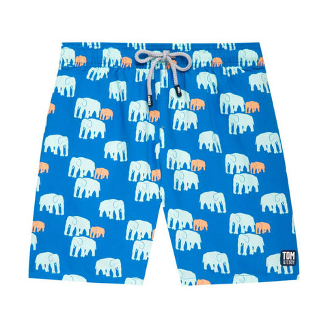 Chalky Blue Elephants