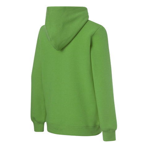 RIPZONE BOY'S POTVIN HOODY ONLINE LIME BACK