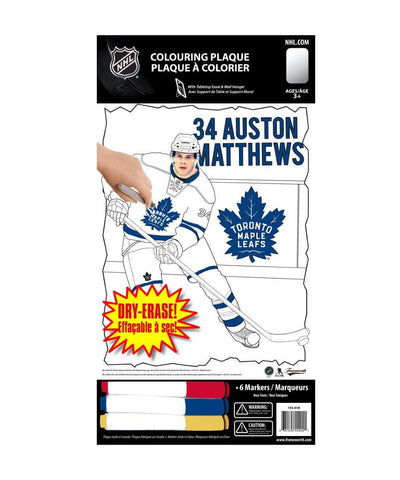 FRAMEWORTH 8X10 MATTHEWS TORONTO COLOURING PLAQUE