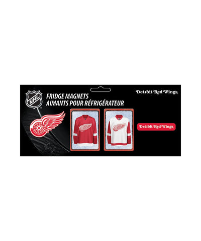 FRAMEWORTH DETROIT RED WINGS NHL MAGNET SET