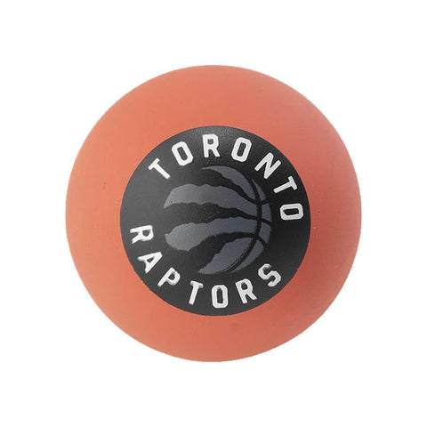 SPALDING HIGH BOUNCE RAPTORS MINI BALL