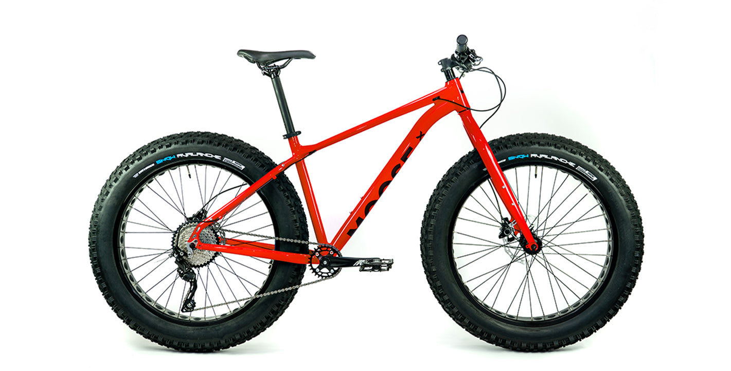 Moose Fat Bike 2