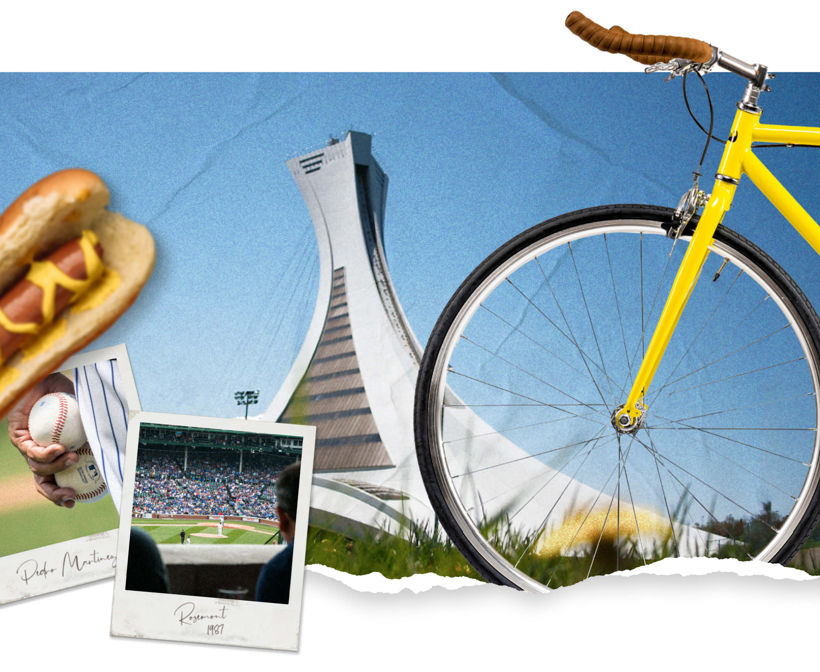 Fixie Feature Image