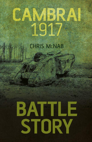 Battle Story Cambrai 1917 - The Tank Museum