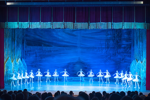 Origins of Inspiration: Swan Lake