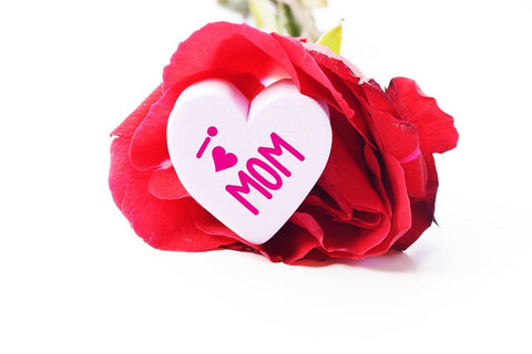 Mothes Day Rose