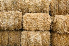 Grass Hay, Straw, & Seed