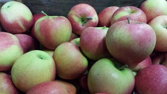 Sonata Apples from Hillcrest Orchard