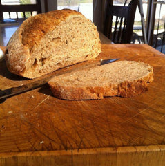 Steve's Whole Wheat Bread
