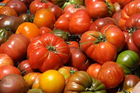 Heirloom Tomatoes Large