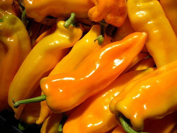 Peppers, Gatherer's Gold