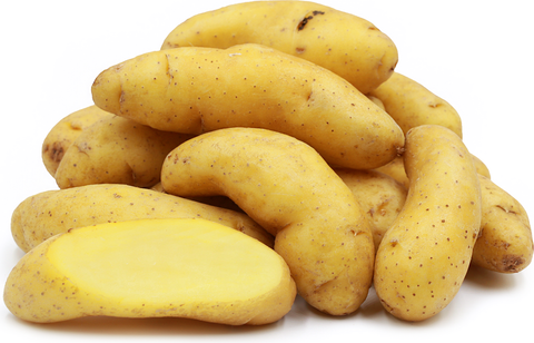 Banana Fingerling Potatoes Large