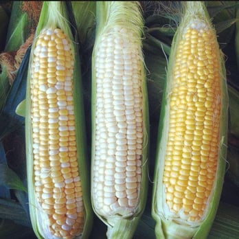 Mixed Sweet Corn Large
