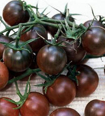 Burgundy Cherry Tomatoes