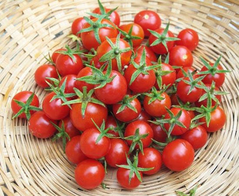 Cherry Tomatoes Large