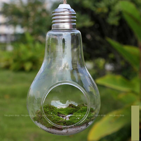 Terrarium Glass Vaso 14*8cm Lamp Light Bulb Tabletop Vase Dinner