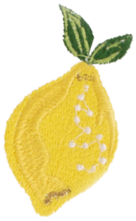 Lemon White Everyday Pouch