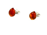 Cognac AMBER Sterling Silver Teardrop Stud Earrings 925 - 8 x 10 mm - (ABST2910151)