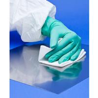 BioClean Cleanroom Wipes