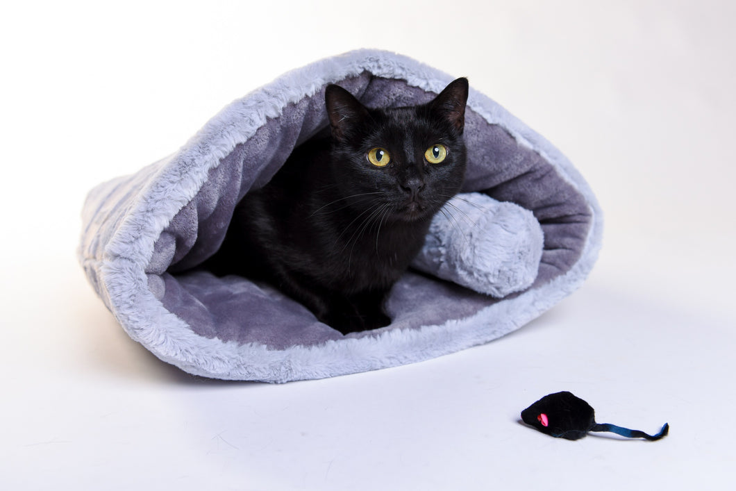 Cat cozy and Belly Roll - Silver - Funraise