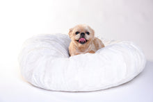 Dog Puff Bed - Cream - Funraise
