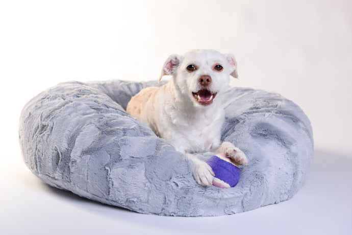 Dog Puff Bed - Silver - Funraise