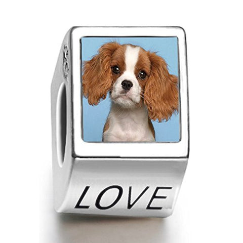 AnotherKiss A Cavalier King Charles Spaniel Animal Photo Love European charm bead