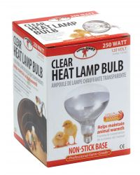 250 Watt Clear Heat Lamp Bulb