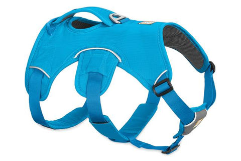 Web Master Multi-Use Harness, Secure & Reflective, Assorted