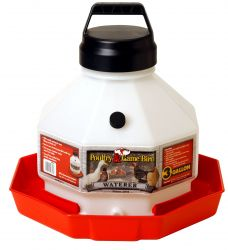 Plastic Poultry Waterer, Assorted up to 7 Gallon