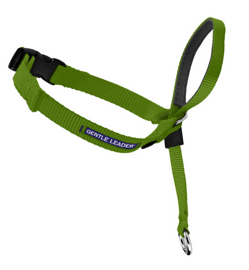 Petsafe Gentle Leader Quick Release Green Apple Headcollar for Dogs