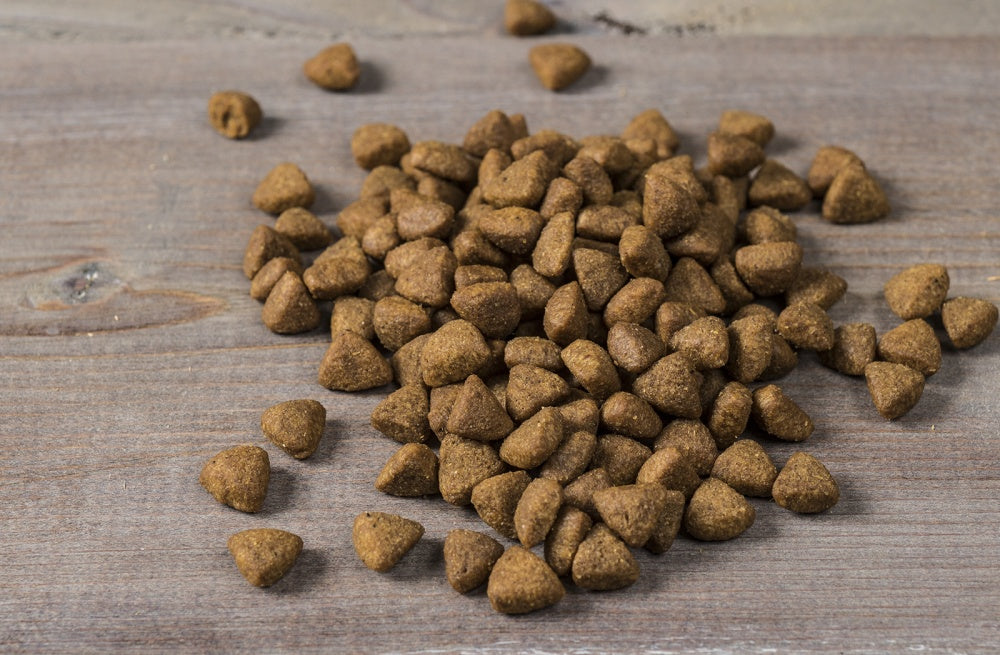 Nulo FreeStyle Limited+ Grain Free Alaska Pollock & Lentils Recipe Puppy & Adult Dry Dog Food