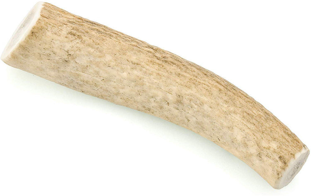 Barkworthies Whole Elk Antler Dog Chew for Medium Breed Dogs