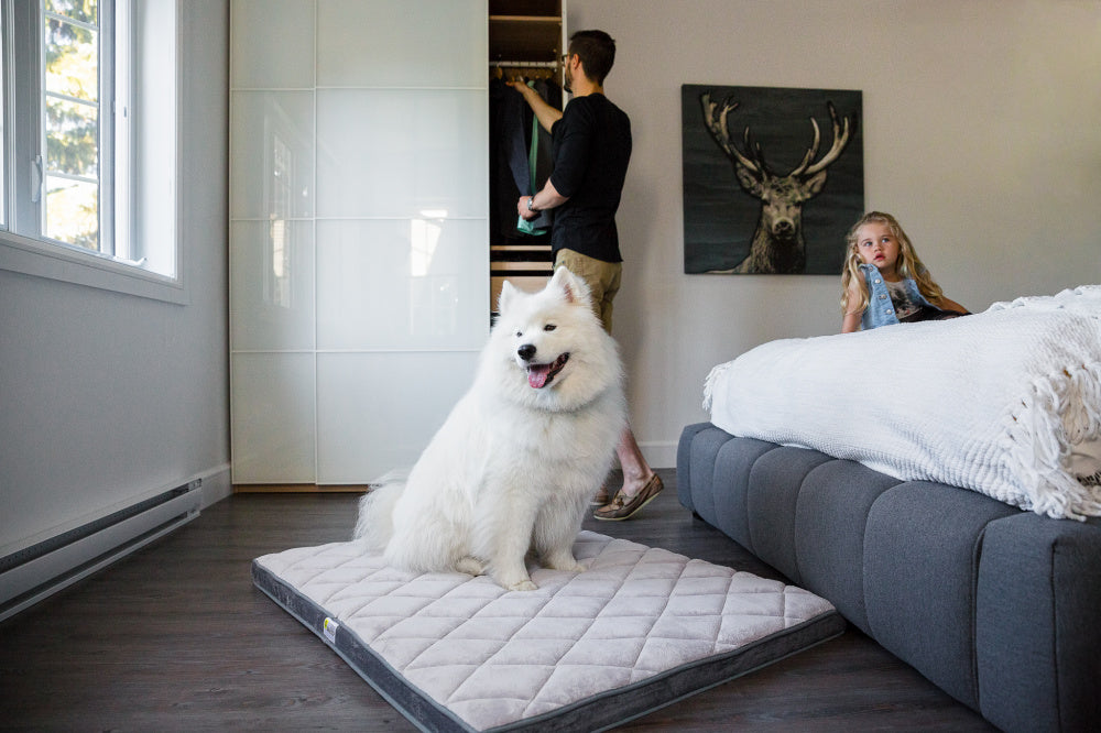 BeOneBreed Gray Diamond Pet Bed