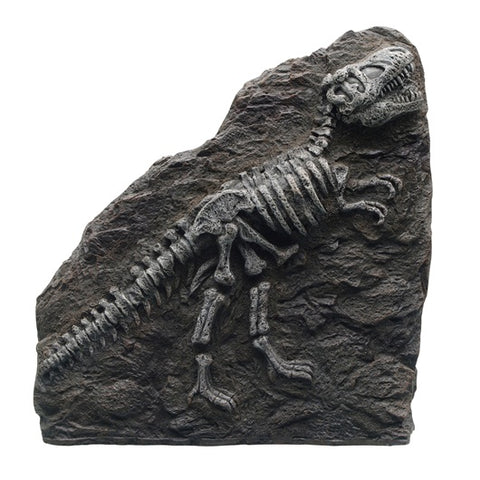 "Marina Decorative Fossils, T-REX, 8.5"" x 9"" x 1.8"""