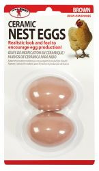 Ceramic Nest Eggs 2 pk, Brown or White