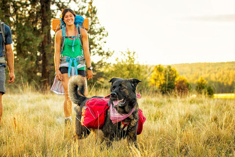 Palisades Pack™, Multi-Day BackCountry