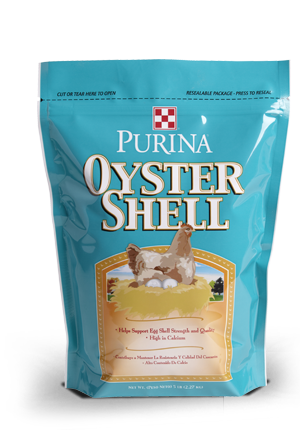 High Calcium Oyster Shell Supplement