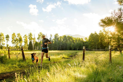 Trail Runner System