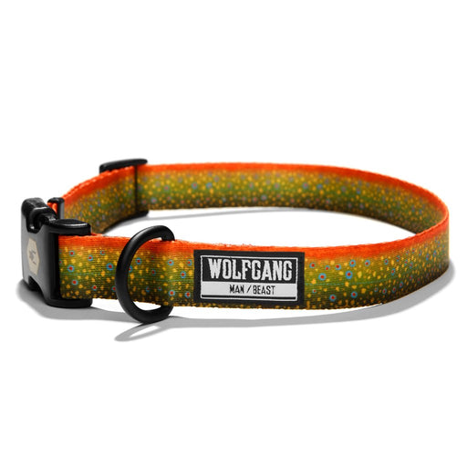 BrookTrout Dog Collar