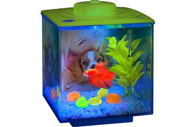 Betta Glow Cube Led Light Desktop Tank Kit