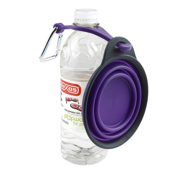Collapsible Travel Cup with Bottle Holder and Carabiner