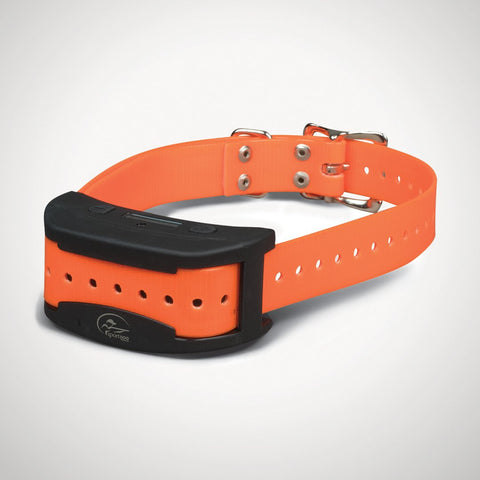 SportDOG Brand® Contain + Train™,  Add-A-Dog® Collar