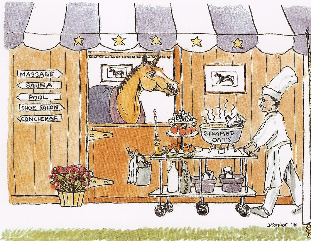 Five Star Stall - For The Pampered Horse<br>Note Card #14