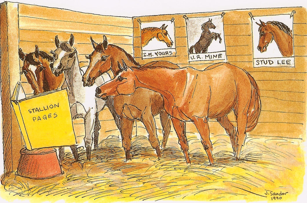 Thoroughbred Mares Checking Out The Stallion Book<br>Note Card #16